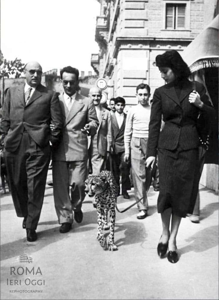 Un ghepardo a via veneto roma ieri oggi for Fiere oggi veneto