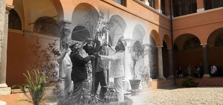 Chiostro San Pietro in Montorio (1900 ca)