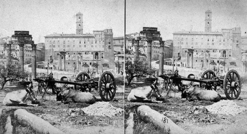 Foto stereoscopiche del Foro Romano (1865) 4 foto